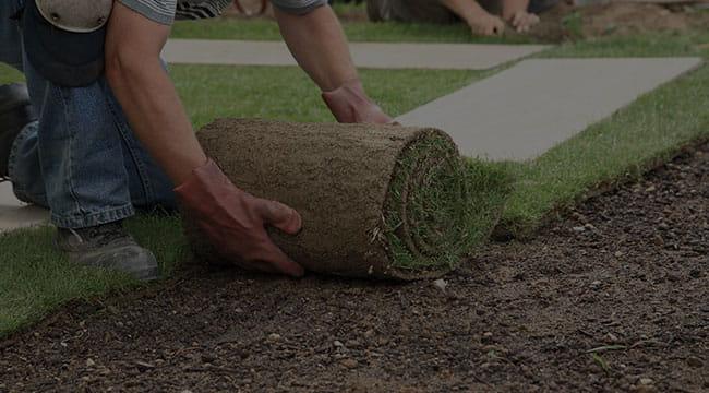 Abbotsford Lawn Care