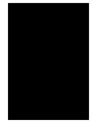 Top Fox Landscaping Logo